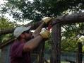 notching logs