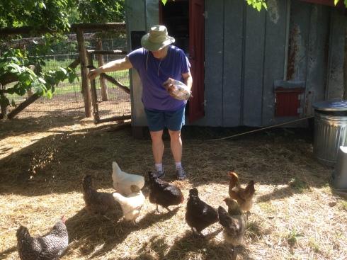 Angela feeding hens